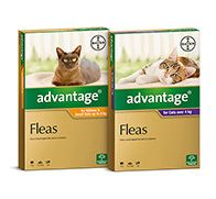 Advantage Cats Bayer New Range