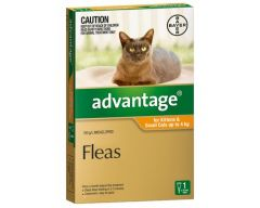 ADVANTAGE ORANGE CAT/KITTEN (0-4kg)  4 PACK