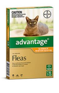 ADVANTAGE ORANGE CAT/KITTEN (0-4kg)  6 PACK