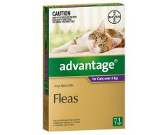 ADVANTAGE PURPLE LARGE CAT (4-8kg) 6 PACK