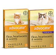 Advocate Cat New Range Bayer