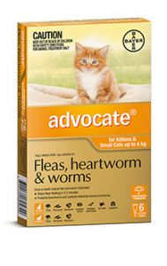 ADVOCATE ORANGE CAT/KITTEN (0-4kg) 6 PACK