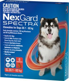 NexGard Spectra 6-Pack for Dogs 30.1-60kg